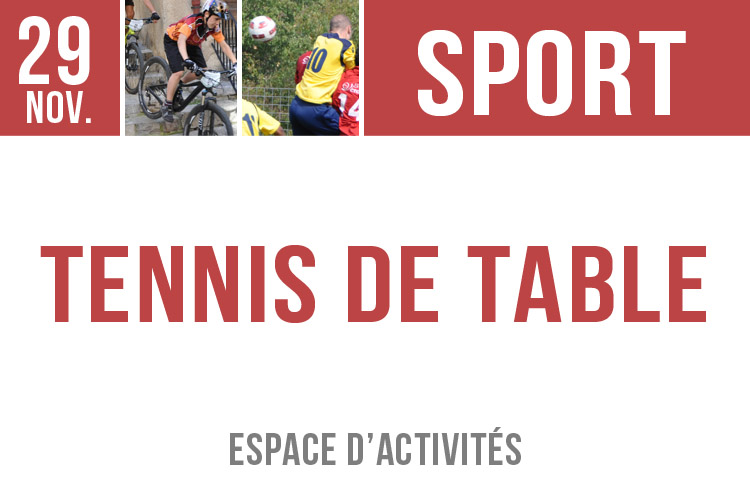 tennis de table 2911