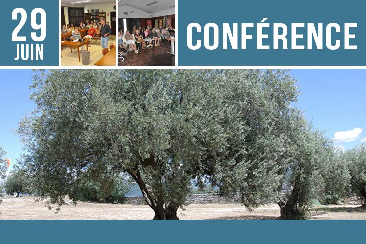 conférence - olivier