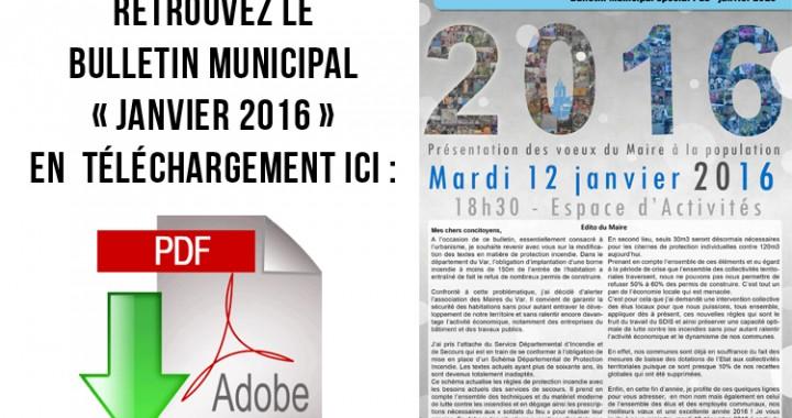 bulletin dl janvier 2016