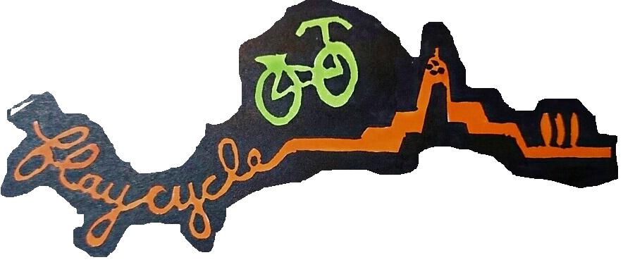 LOGO FLAYCYCLE[56077] (3)