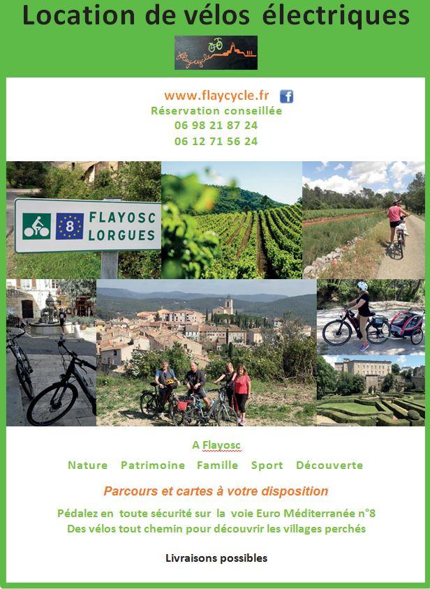 flaycycle